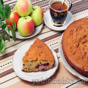 Шарлотка с яблоками и смородиной на кефире