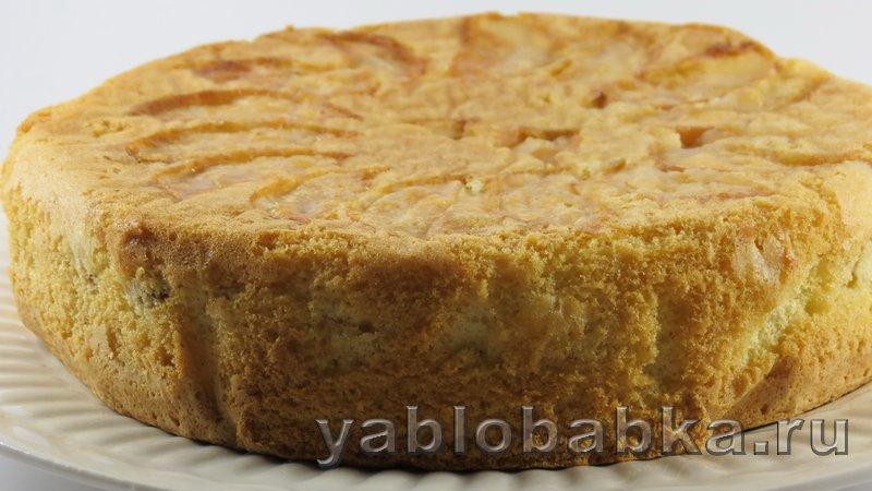 Рецепт шарлотки с яблоками простой и вкусный: фото 10