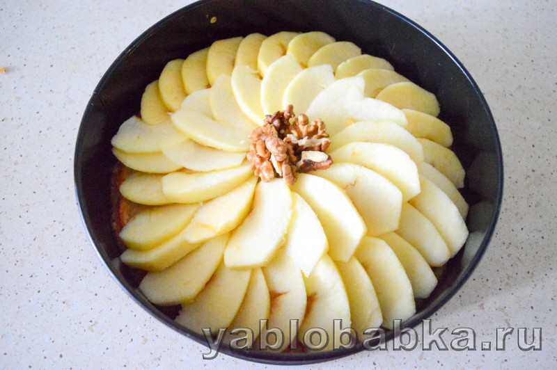 Сметанная шарлотка с яблоками и грецкими орехами: фото 12